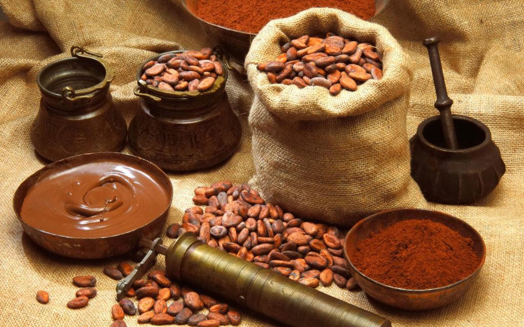 история развития шоколада