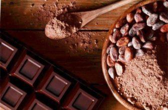 шоколадная диета миниатюра